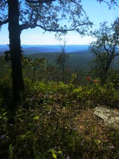 Hare Mountain Overlook