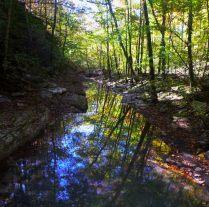 Creek reflection straight across hobo falls on OHT