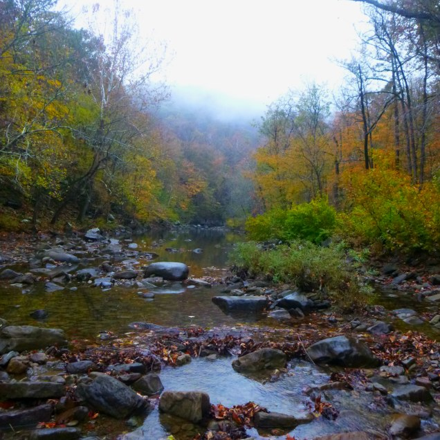 Creek in the Mist on OHT