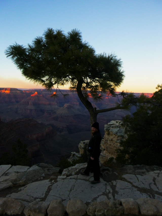 Daniel beneath pine tree at Grand Canyon