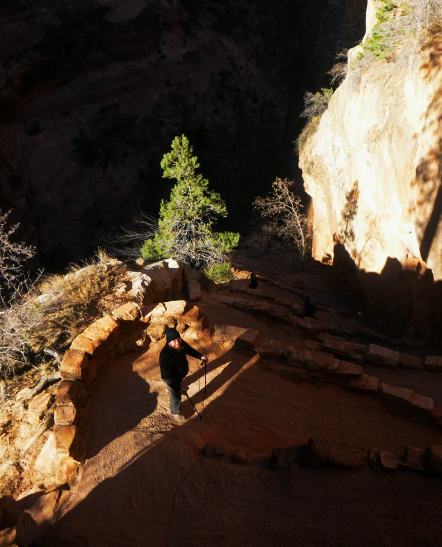 Daniel makes his way down the Angels landing trail